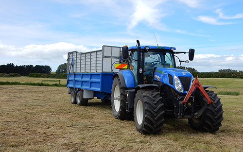 RCL - Silage